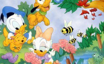 Imagenes Donald y Daisy imágenes