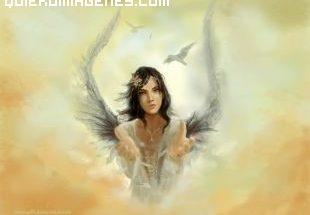 Angel adorable imágenes