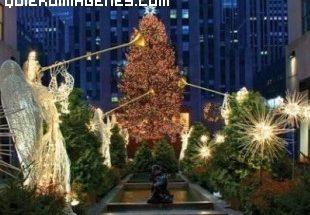 Arbol de Navidad de Rockefeller Center imágenes