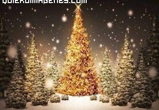 Arbol de Navidad imágenes