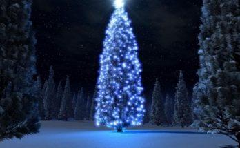 Imagen de un árbol de navidad imágenes