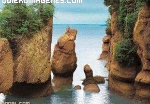 Bahía de Fundy imágenes