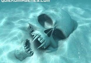 Calavera de vampiro en el fondo del mar imágenes
