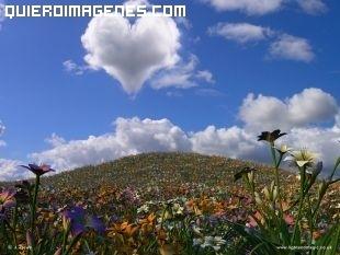 Nube con forma de corazón en el cielo imágenes