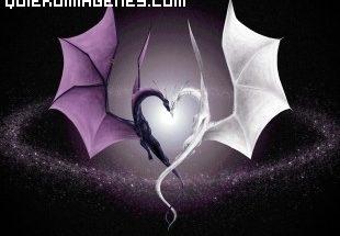 Dragón blanco y dragón negro imágenes