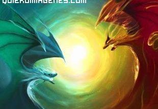 Dragones enfrentados imágenes