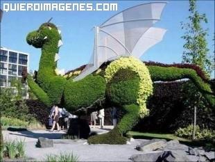 Dragón vegetal alado imágenes