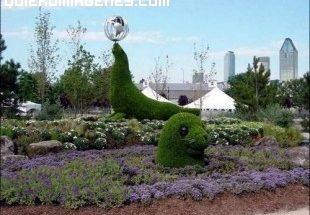 Escultura vegetal de foca imágenes