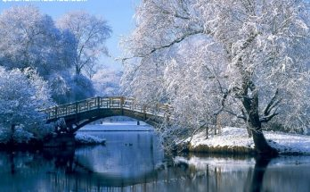 Un paisaje nevado imágenes