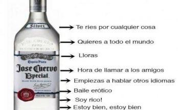 Etapas del alcohol imágenes
