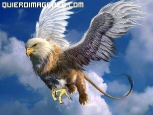 Aguila mutante imágenes