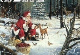 Papá Noel rodeado de animales imágenes