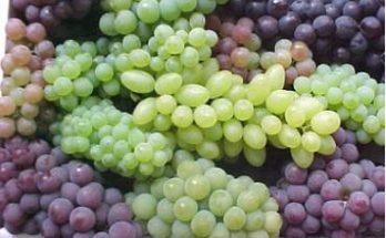 Uvas de Colores imágenes