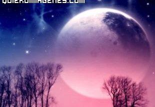Luna malva imágenes