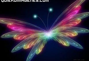 Mariposa multicolor imágenes