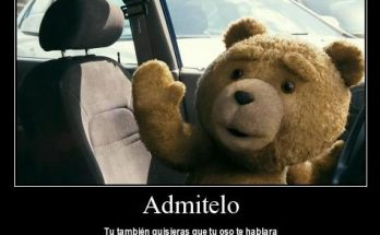 Osito Ted imágenes