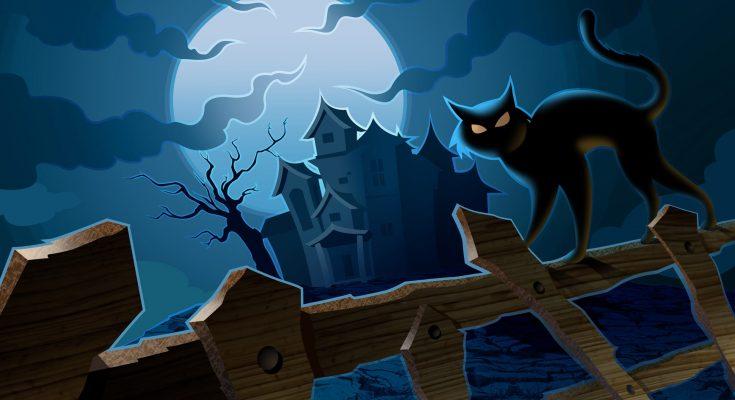 Gato Halloween imágenes