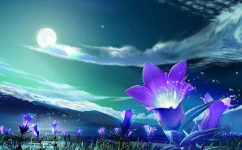 Flores fantasía imágenes
