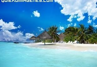Playa Paradisíaca imágenes