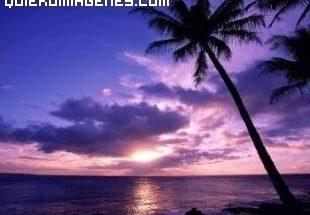 Atardecer en Hawaii imágenes