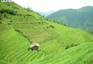 Terrazas de Yangshuo imágenes