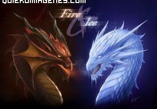Cabezas de dragón imágenes