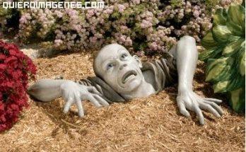 Zombie en el jardín imágenes
