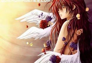 Angel manga imágenes