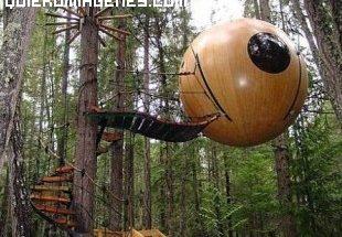 Una casa bola en un arbol imágenes