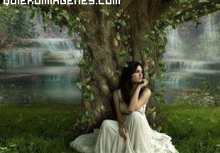 Sentada bajo el árbol imágenes