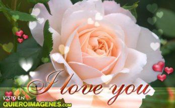 I love you imágenes