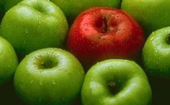 Fotos de Manzanas imágenes