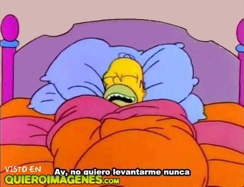 Homer Simpson en cama imágenes