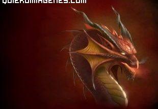 Poderoso dragón imágenes