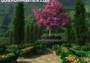 Camino al jardín imágenes