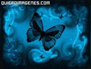 Mariposas volando sobre un fondo azul imágenes