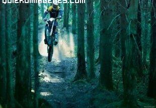 Motocros en la penumbra del bosque imágenes