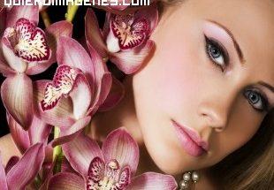Belleza entre orquideas imágenes