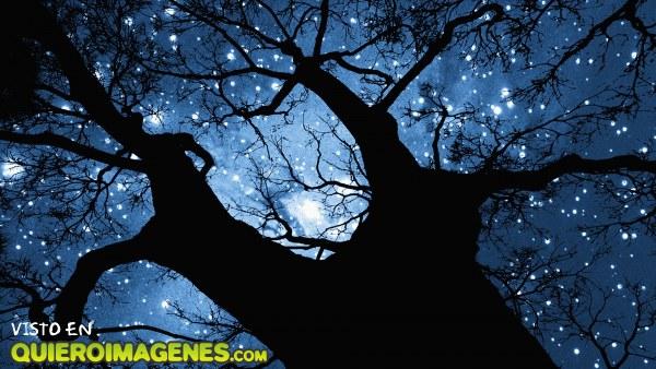 Noche embrujada imágenes