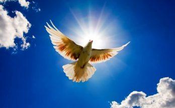 Espíritu Santo imágenes