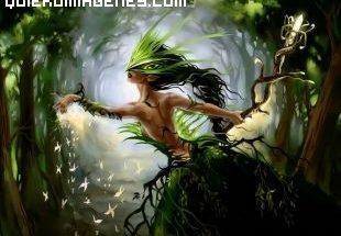La princesa del bosque imágenes