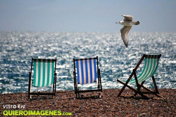 ¿Nos vamos a la playa? imágenes