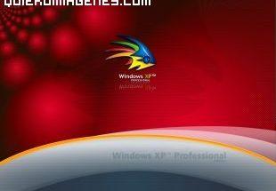 Windows XP imágenes